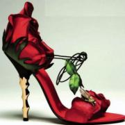large_rose-shoes